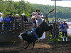 Bull Ridings : 2 galleries with 294 photos
